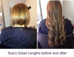 Sue's Great Lengths
